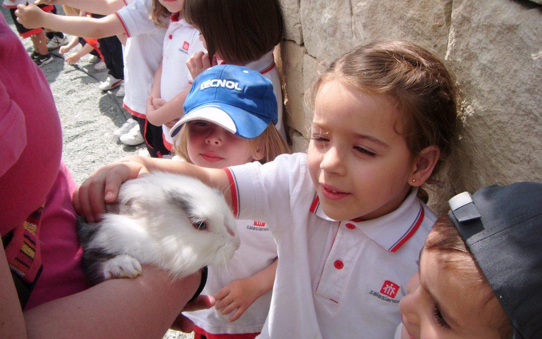 Visita a la Granja Natural School Infantil 3 años